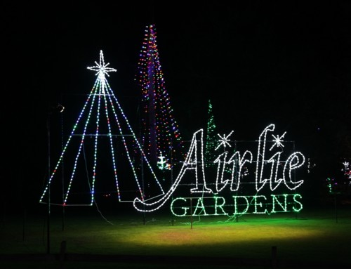 Enchanted Airlie Brings a Beautiful Holiday Spirit to Wrightsville Beach.